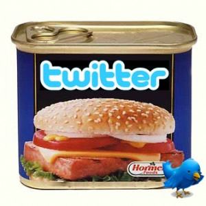 Twitter Spam Followers and How to Stop Them