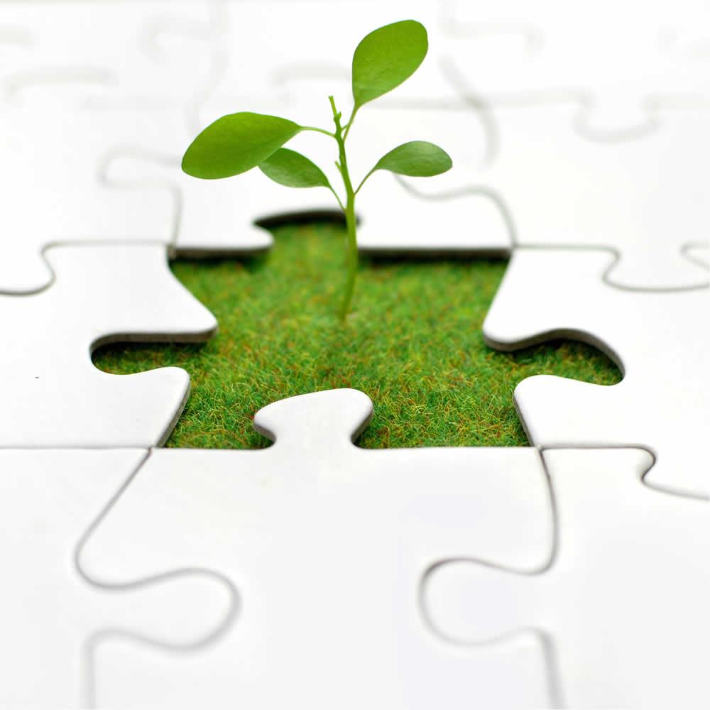 Balancing Agility & Process